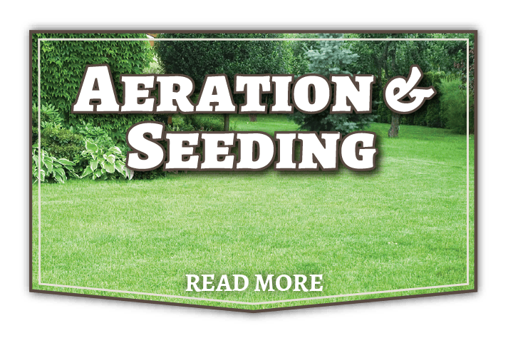 kansas city aeration and seeding