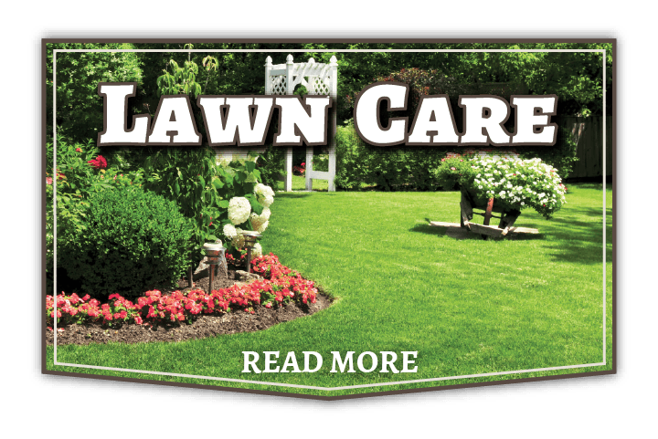 Kansas City Area Lawn Care Services