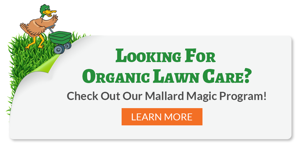 Mallard Magic Organic Lawn Care Program