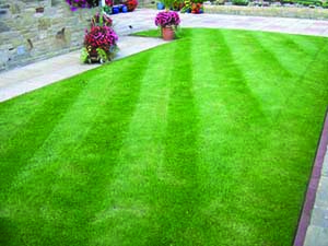 green lawn with diagonal mowing pattern